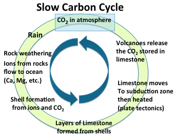 The greenhouse effect and the carbon cycle the slow carbon cycle the process circulates co2 through the oceans to limestone to outgassing back again to the atmosphere over many millions of years ccuart Gallery