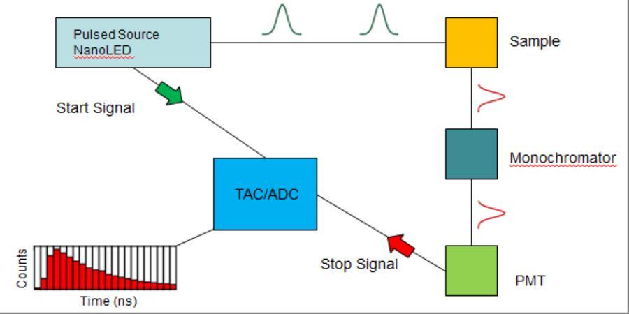 Tcspc on Fluorescence Spectroscopy Diagram
