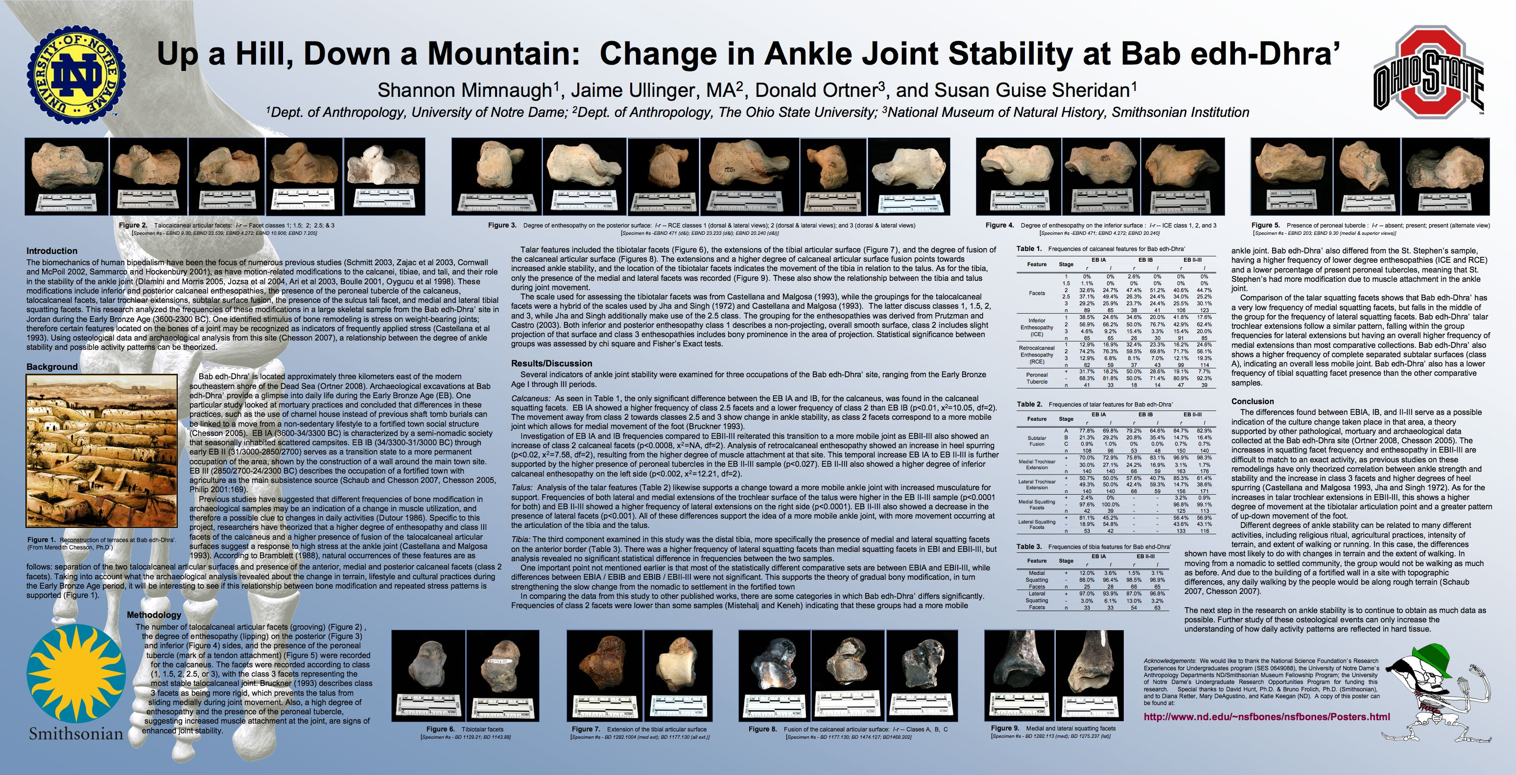 Posters/Presentations