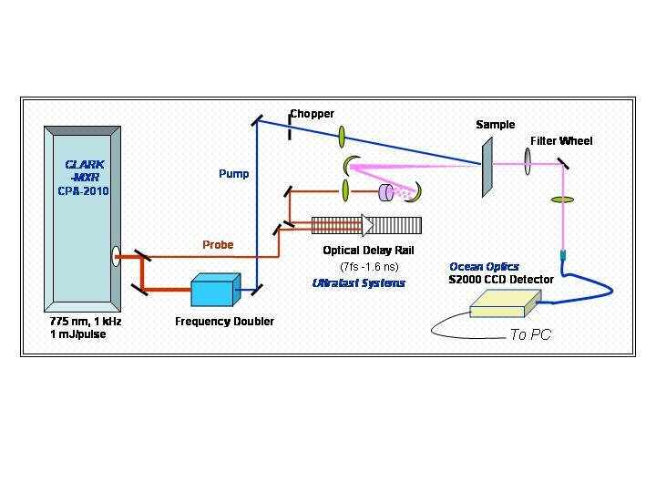 Femtosecond Transient Absorption Spectroscopy